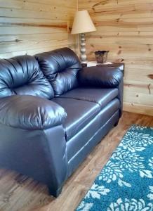 Cabin 2 Living